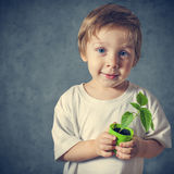 Portrait of funny little boy with window plants Royalty Free Stock Image