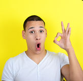 Portrait of funny man showing OK gesture with hands against yell Royalty Free Stock Image