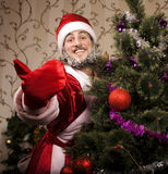 Portrait of funny Santa Claus. At Christmas tree Royalty Free Stock Photo