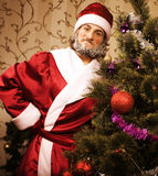 Portrait of funny Santa Claus at home with. Christmass tree, real normal man Stock Image