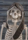 Portrait of a funny skeleton pilot stock photo