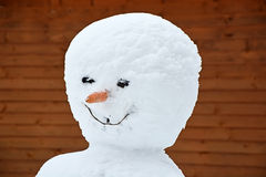 Portrait of the Funny snowman Stock Images