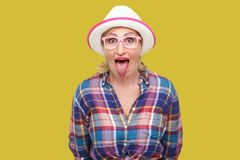 Portrait of funny surprised modern stylish mature woman in casual style with hat and eyeglasses standing tongue out, looking at. Camera with big eyes. indoor royalty free stock image