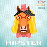 Portrait of funny vintage hipster horse with Stock Photos