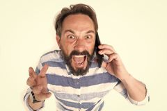 Portrait of furious mature bearded man dressed in shirt with blue lines at mobile phone isolated on white background. Mad stock photography