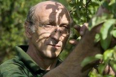 Portrait of gardener Stock Images