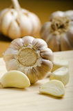 Portrait of garlic Royalty Free Stock Photography