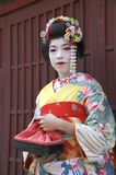 Portrait of a geisha Royalty Free Stock Photos