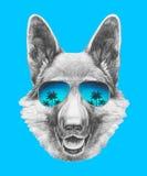 Portrait of German Shepherd with mirror sunglasses. Hand drawn illustration Stock Photography