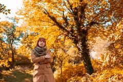 Portrait of ginger girl at beautiful autumn forest stock photo