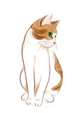 Portrait of  ginger tabby cat. Hand drawn portrait of  ginger tabby cat Royalty Free Stock Images