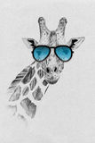 Portrait of giraffe drawn by hand in pencil in sunglasses Royalty Free Stock Photo