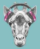 Portrait of Giraffe with headphones royalty free illustration