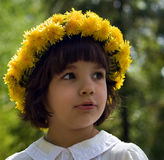 Portrait of the girl. In a wreath from dandelions Royalty Free Stock Photo