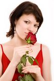 Portrait of a girl. The Portrait of the girl with a rose in hands royalty free stock image