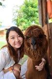 Portrait girl with alpaca. Portrait happy girl with brown alpaca in farm, Thailand Stock Image