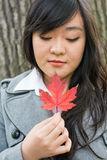 Portrait of girl during autumn Royalty Free Stock Photo