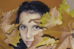 Portrait of a girl with autumn leaves. Little teenage girl in autumn orange leaves Royalty Free Stock Image
