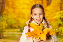 Portrait of girl with autumn yellow leaves bunch Royalty Free Stock Photography