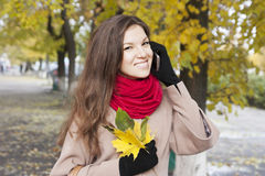 Portrait of the girl in autumn Stock Photography