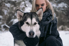 Portrait of girl with  big Malamute dog on winter background. Stock Photos