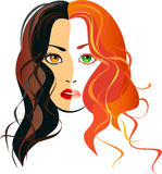 Portrait of a girl blondes and brunettes in one person. Vector image portrait of a girl blondes and brunettes in one person Royalty Free Stock Photography