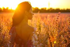 Portrait of a girl in a blooming field in the sun at sunset, the concept of relaxation.  Stock Photos