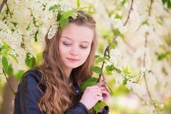 Portrait of a girl with blooming tree Stock Images
