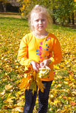 Portrait of a girl. With a bouquet of yellow leaves Royalty Free Stock Image