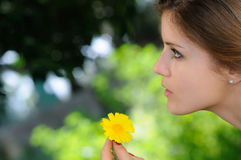 Portrait of girl with daisy Stock Images