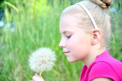 Portrait of a girl with dandelion. On natural background Royalty Free Stock Photography