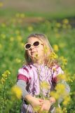Portrait of a girl in glasses Royalty Free Stock Images