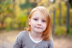 Portrait of a girl with gray eyes. Closeup outdoor stock photography