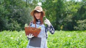Portrait of a girl harvesting fresh pumpkin on organic plantation. Portrait of a girl harvesting fresh pumpkin on organic plantation stock footage