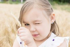 Portrait of girl holding a wheat in wheat field Royalty Free Stock Photos