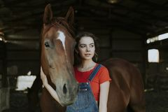 Portrait of a girl and a horse royalty free stock photos