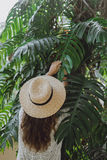 Portrait of a  girl in the leaves of a palm tree Stock Photos