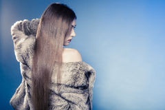 Portrait of girl with long hair. Young woman in fur coat on blue. Royalty Free Stock Photos