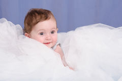 Portrait of a girl lying in the six-month tissue. Six-month beautiful charming girl on the couch stock images