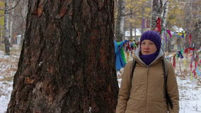 Portrait of a girl near a big old tree, larch stock video