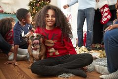 Portrait Of Girl With Pet French Bulldog Celebrating Family Christmas At Home Together stock photos