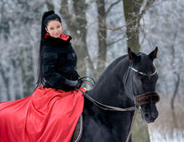 Portrait of  Girl in red on a black horse in winter Stock Photos