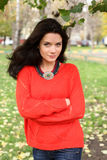 Portrait of a girl in a red sweater Stock Photography