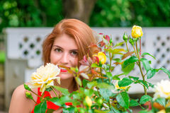 Portrait of a  girl with a rosebush Stock Images