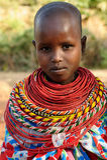 Portrait of the girl from the Samburu tribe in Kenya Stock Photography