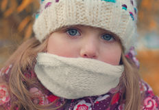 Portrait of a girl in a scarf and hat Royalty Free Stock Image