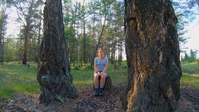 Girl sitting on a stump between two large trees in the woods. Portrait of a girl sitting on a stump between two large trees in the woods stock video