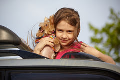 Portrait girl with small dog Stock Image