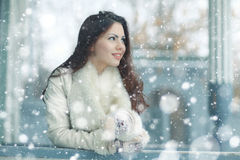 Portrait of a girl in snowy park Stock Photography