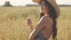 Portrait of a girl in a straw hat wheat field. young attractive woman in rustic dress stock footage
